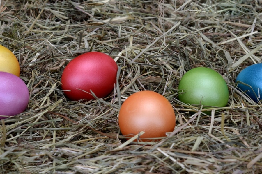 Bright coloured easter eggs on ground