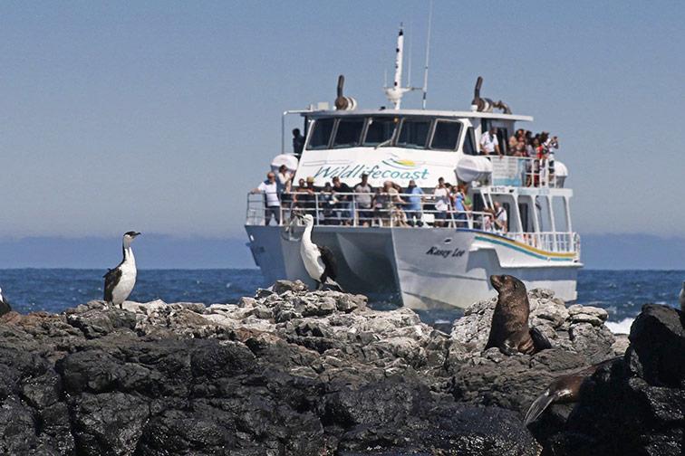 Image courtesy: Wildlife Coast Cruises