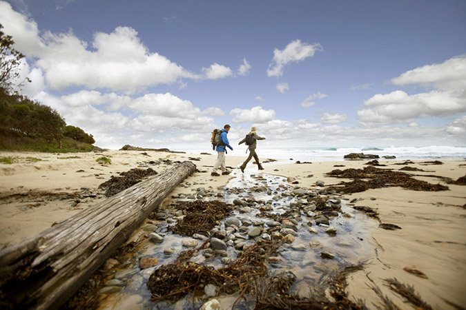 Image of a couple exploring/walking on a beach with rocks and driftwood in the foreground